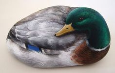 Roberto Rizzo mallard 730x468 The art of Roberto Rizzo   rock painting and more