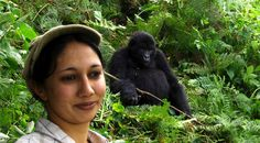 Don't miss this last chance to Gorilla Trek at $450! Gorilla Trekking, Last Chance, Posts, Blog, Animals, Animales, Messages, Animaux, Blogging