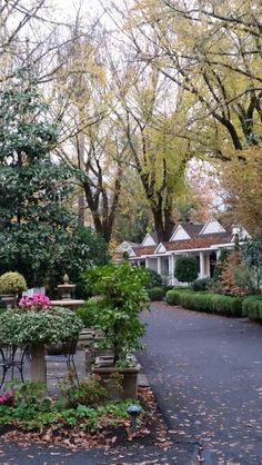 Calistoga Ca...Grove Cottages..loved it