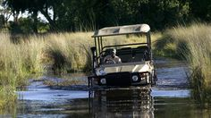 Okavango and safaris, and the no. 1 Ladies Detective Agency!