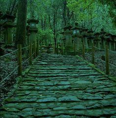 Kasuga Shrine 春日大社