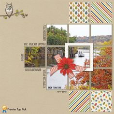 Layout by BAlex on Digital Scrapper