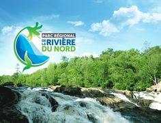 Niagara Falls, Travel, The Visitors, Park, Tourism, Places, Vacation, Landscape, Viajes