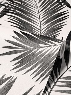 This beautiful Diamond Tropical Palm Wallpaper will bring a touch of style to any room. The design features a large scale classic palm leaf print in black, set on a contrasting white background that has a lightly textured finish and is infused with shimmering glitter particles to subtly catch the light. Easy to apply, this high quality paper would look great when used to create a stunning feature wall or to decorate a whole room. Palm Wallpaper, Tropical Wallpaper, Computer Wallpaper, Textured Wallpaper, Glitter Highlight, Monochrome Color, High Quality Wallpapers, Leaf Prints, Pattern Wallpaper