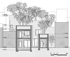 Gallery - House for Trees / Vo Trong Nghia Architects - 19