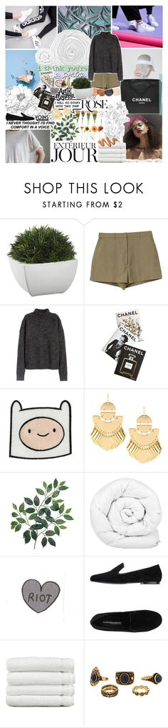 """""""destroy what destroys you ; yoins"""" by oreokk22 ❤ liked on Polyvore featuring Crate and Barrel, Chanel, H&M, ...Lost, Assouline Publishing, Brinkhaus, Kennel + Schmenger, Linum Home Textiles, GET LOST and Wild Rose"""
