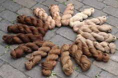 Lavendelblau: Dying with walnut shells.
