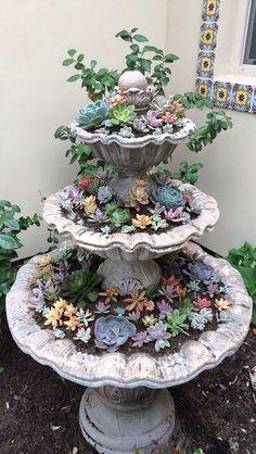 Succulent fountain : )