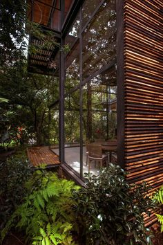 Architecture Design, Led Exterior Lights As Green Renovation Vegetation And Open Space: Incridible Private Garden in Mexico Accommodating Fo. Design Exterior, Interior And Exterior, Private Garden, My Dream Home, Interior Architecture, Landscape Architecture, Installation Architecture, Futuristic Architecture, Future House