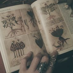 character writing inspiration | magic spells witchcraft witch