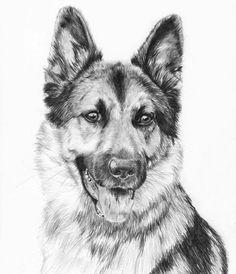 German Shepherd by Victoria Jensen