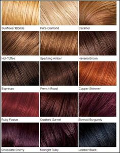 Loreal color chart.Different Blonde,brown,red,dark hair color chart ...