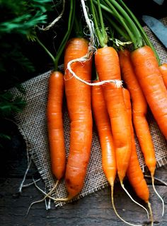 In Season - September. There's just too much choice with carrots – roasted, fried, boiled, raw or pureed. If you want to add sweetness to your dish, then carrots can be the answer.