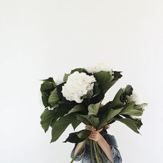 Beautiful blooms - Vicki Archer //  https://www.instagram.com/vickiarcher/