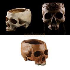 3 x Resin Replica Human Skull Party Bar Prop Flower Container Bonsai Pot Planter  | eBay