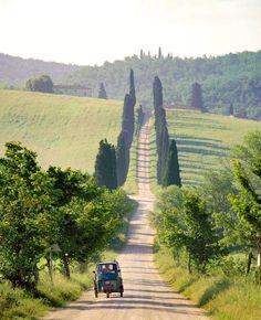 ***Country road (Tuscany, Italy) by SIME