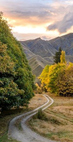 Bill ✔️  Macetown, Central Otago,South Island, New Zealand.    Bill Gibson-Patmore.  (curation & caption: @BillGP). Bill✔️