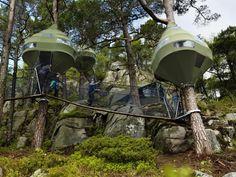 Fem ulike hytter hengende i trær med gangbruer mellom. Gå fra hytte til hytte og fra tre til tre. Hver av hyttene henger i kraftige furutrær og er består av stålrammer, tregulv og teltduk.