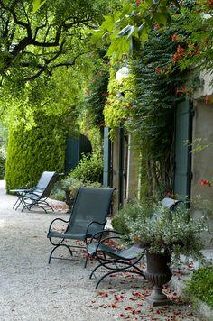 trumpet vine....in a Mediterranean style garden