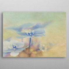 by Susan Gary Blue Hydrangea, Posters, Metal, Painting, Art, Art Background, Painting Art, Kunst, Poster