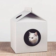 The House For Animals Is Made From Three Layer Micro Corrugated Cardboard  Retains Form 3 6 Months Quality Cardboard, Excellent Packaging For  Delivery, ...