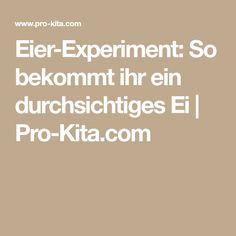 Eier-Experiment: So bekommt ihr ein durchsichtiges Ei | Pro-Kita.com