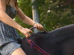 Instagram media by luiixe - Vertrauen ist Mut, und Treue ist Kraft❤️ #pferd #pferde #pferdi #pferdchen #horse #horses #instahorse #pony #ponys #ponies #reiten #love #bestespferd #riding #mylife #hdl #ponylove #iloveyou #dressage #dressur #dressurpferd #jumping #jump #springreiten #springen #springpferd #halsring #freiheitsdressur