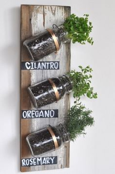 Mason Jar Herbs: Mason jars may be a cliché, but we gotta admit, they're tailor-made for an indoor herb garden and crazy-easy to assemble. Click through for more indoor herb garden ideas. Mason Jar Herbs, Mason Jar Herb Garden, Herbs Garden, Mason Jar Planter, Hanging Mason Jars, Pots Mason, Succulents Garden, Fruit Garden, Culture D'herbes