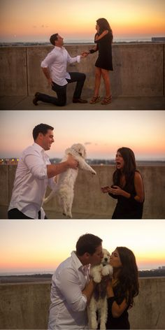 This surprise marriage proposal included an engagement ring and the cutest puppy!   Oh my goodness, YES!!!!
