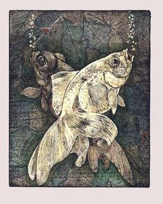ARTIST-Sioban Coppinger - This lovely etching used soft ground. Linocut Prints, Art Prints, Block Prints, Intaglio Printmaking, Collagraph, Etching Prints, Fish Art, Gravure, Woodblock Print