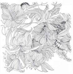Floribunda: A Flower Colouring Book (9781780677767) - Product Information Lookup…