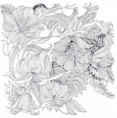 Floribunda: A Flower Colouring Book (9781780677767) - Product Information Lookup…