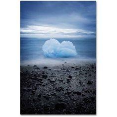 Trademark Fine Art 'Cotton Blue' Canvas Art by Philippe Sainte-Laudy, Size: 16 x 24, Multicolor
