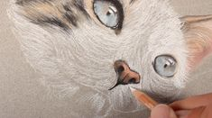 Learn how to draw a cat with pastels in this lesson that uses pastel pencils and traditional soft pastels. Cat Drawing Tutorial, Pastel Pencils, Pastel Drawing, Learn To Draw, Art World, Soft Pastels, My Arts, Drawings, Cats
