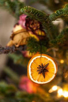 These dried orange slices with star anise make the prettiest, natural, and fragrant DIY Christmas ornaments for your tree! These dried orange slices with star anise make the prettiest, natural, and fragrant DIY Christmas ornaments for your tree! Noel Christmas, Rustic Christmas, Simple Christmas, Christmas Ideas, Elegant Christmas, Diy Christmas Projects, Christmas Oranges, Orange Christmas Tree, Natural Christmas Tree
