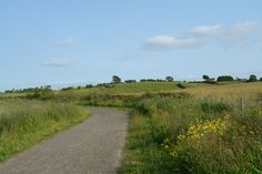 """A day to the """"Dams to Darnley"""" Country Park - June 2013 SCOTLAND"""