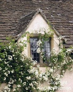 """Country cottage window (windows were once called """"wind-eye's"""") White Cottage, Rose Cottage, Cottage Style, Cottage Living, Cottage Homes, English Country Cottages, Windows And Doors, House Styles, Window Boxes"""