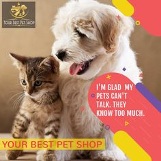 Trusted and branded pet products at best price, free shipping. Buy pet food, pet toys and petaccessoriesfor dog, cats, birds and other small petsonline .  #pets #dog #cat #bestpetsshop #doglovers