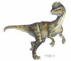 Resultado de imagen de dinosaurios carnivoros