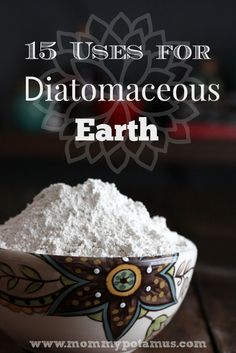 15 Uses For FOOD GRADE Diatomaceous Earth - nourish hair, skin and nails, rid your pets and home of critters, and keep your garden healthy. Be Natural, Natural Cures, Natural Healing, Natural Soaps, Natural Deodorant, Ayurveda, Health And Beauty, Health And Wellness, Health Tips