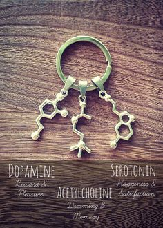 Items similar to Serotonin Dopamine Acetylcholine Molecule Keychain Necklace Charm Bracelet Science Chemistry Biology Neuroscience Psychology Biology Brain on Etsy Molecule Necklace, Molecule Tattoo, Necklace Charm, Cool Science Fair Projects, Cool Science Experiments, Science Chemistry, Cute Jewelry, Things To Buy, Gifts