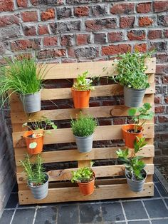 Wooden pallet aromatic herbs - All For Garden Herb Garden Pallet, Herb Garden Design, Diy Herb Garden, Pallet Gardening, Palette Planter, Palette Garden, Backyard Planters, Small Backyard Gardens, Diy Plant Stand