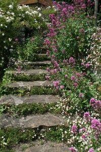 Loseley Park Steps
