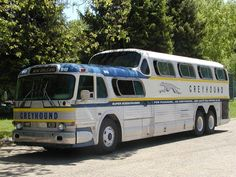 Greyhound Elvis' purchased to have made into a tour bus.