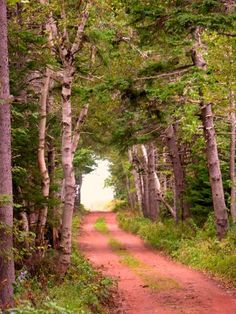 Red clay path to paradise by deedeerom