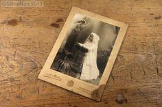 Fotografía Antigua - A Baró Barcelona - Vintage Photo http://r.ebay.com/2Pf6Y2 vía @ebay  @petitsencants #PetitsEncants #PetitsEncantsBCN #ebay #Brocanter #Oddities #Antiques #retro #Vintage #loopneo #loopneostudio #fotografia #photographie #barcelona #picture #photo #woman