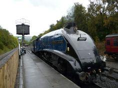 Steam engine train (a British Mallard)