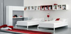 Olivieri collection