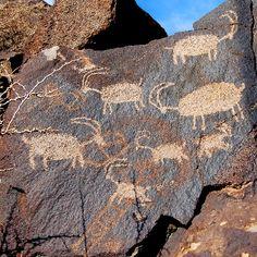 http://www.rockart101.com/i_coso_petroglyph_bighorns.jpg için Google Görsel Sonuçları