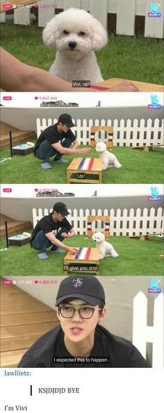That dog is just like its owner, and Sehun knows it^.^
